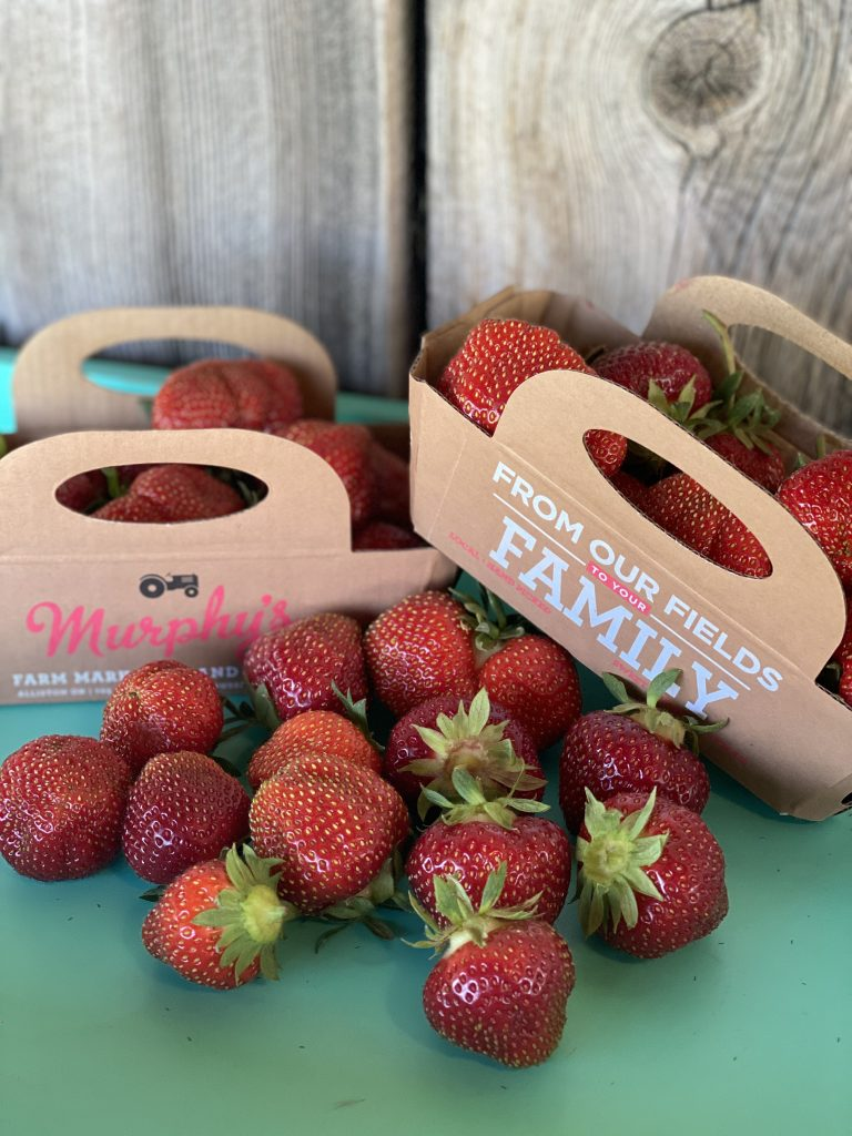 Hand-Picked Strawberries from Murphy's Farm
